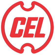 Central Electronics Limited Recruitment