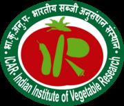 IIVR Recruitment